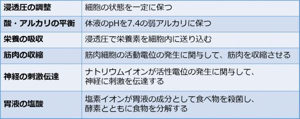 2-2.塩の生理作用